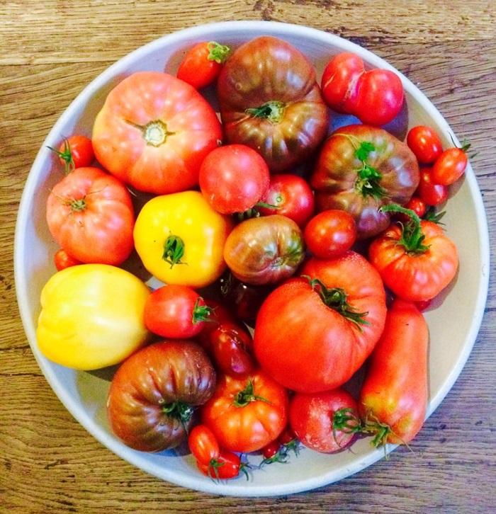 Ca c'est de la tomate!